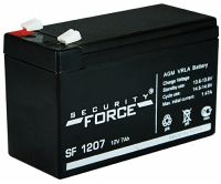 12v 17 Ah SECURITY FORSE (SF 12-17)
